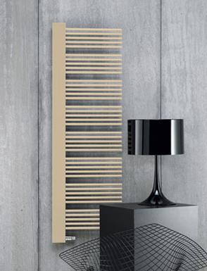 http://www.designradiatorbadkamer.nl/wp-content/uploads/2013/03/elektrische-design-radiator-badkamer-5.jpg